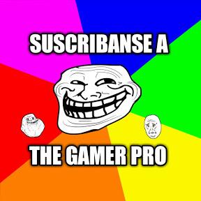 THE GAMER PRO