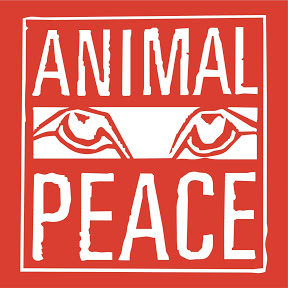 ANIMALPEACE Medienkoordination