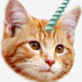 CAT AMORAL
