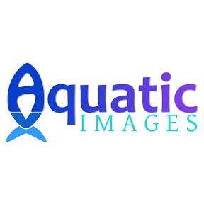 Aquatic Images