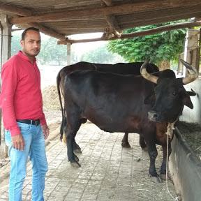 पशुधन किसान