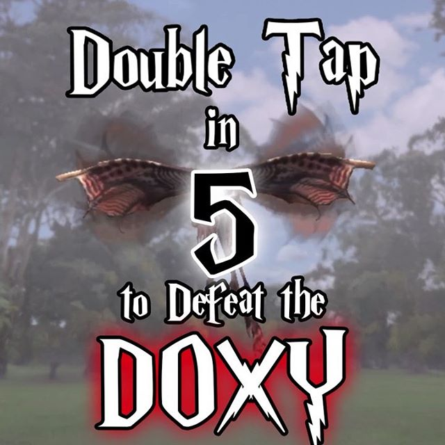 Double tap to defeat that pesky doxy! ◼︎◼︎◼︎◼︎◼︎◼︎◼︎◼︎◼︎◼︎◼︎◼︎◼︎◼︎◼︎◼︎◼︎◼︎◼︎◼︎ New #HarryPotter #WizardsUnite video! ▼▼▼▼▼▼▼▼▼▼▼▼▼▼▼▼▼▼▼ 🔔youtu.be/WSb6eKzoDMI ▲▲▲▲▲▲▲▲▲▲▲▲▲▲▲▲▲▲▲ Collecting those Doxies! @hpwizardsunited @hpwizardsunite