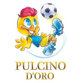 Torneo Internazionale Pulcino d'Oro