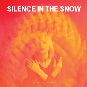 Silence in the Snow - Topic