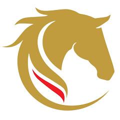 Belgian Horse Trading