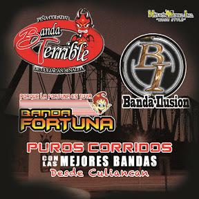 Banda Ilusion de Culiacan Sinaloa - Topic