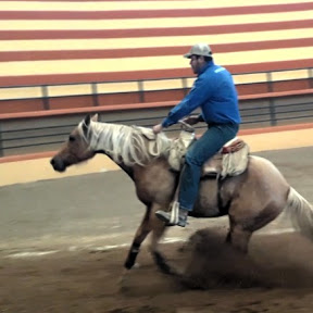 Horsemanship - Edgar De Alba