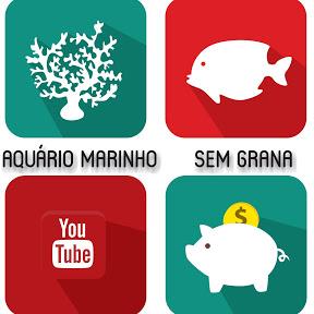 Aquário Marinho -Sem Grana