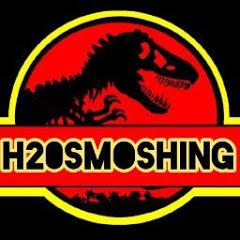 H20 smoshing