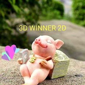 3D WINNER 2D