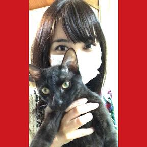 黒猫のネコタとヲネコmama