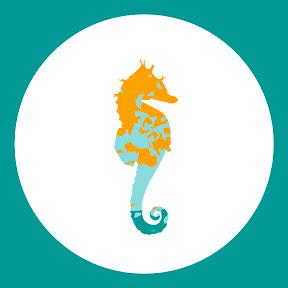Produtora Mar de Ideias