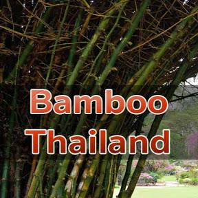 ไผ่เมืองไทย bamboothailand