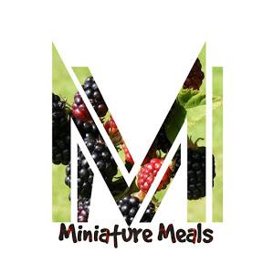 Miniature Meals