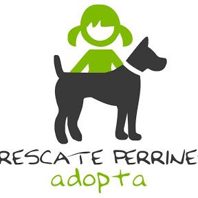 Rescate Perrines