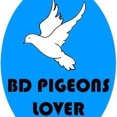 BD Pigeons Lover