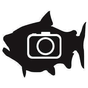 BFSC Fishing