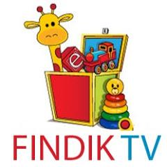 Fındık TV