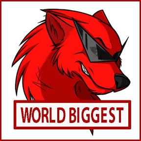 WORLD BIGGEST