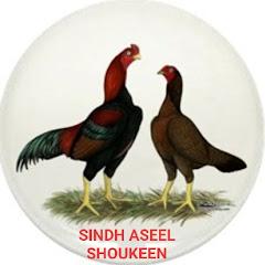 Sindh Aseel Shoukeen