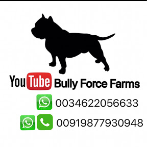 Bully Force farms
