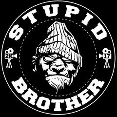 Stupid Brother