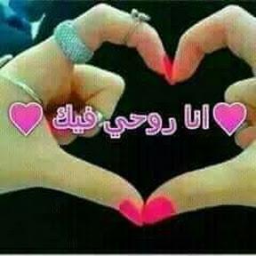 عمرو السعدني زلزال