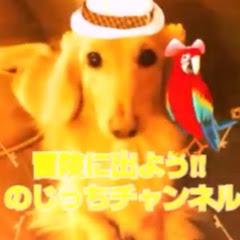 のじっちTV