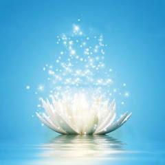 Марафон Медитации
