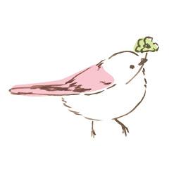 イロイロドリ【可愛い鳥動画】