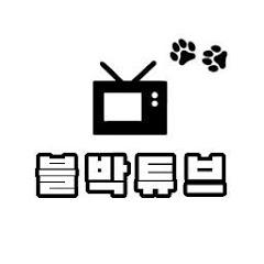 정의구현 블랙박스!? _ [블박튜브]