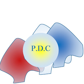 P.D.C Vision pour la R.D.C