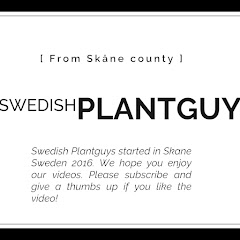 Swedish Plantguys