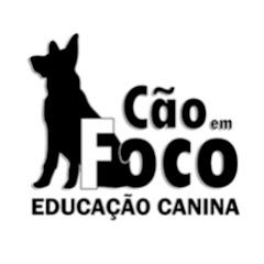 Cão em Foco Educação Canina
