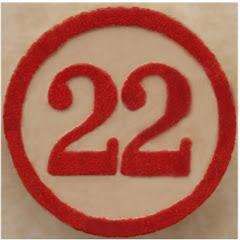 22-ci Əsr