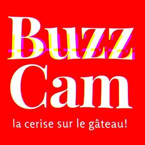 BUZZ CAM TV