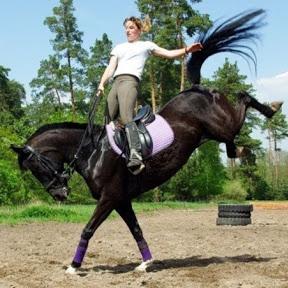 Equestrian Videos