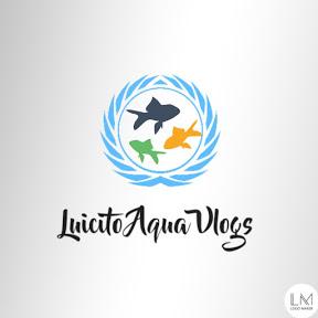 Luicito Aqua Vlogs