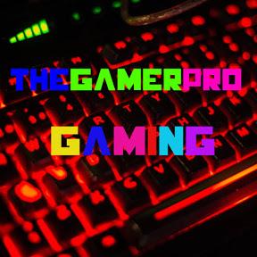 TheGamerPro