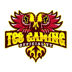 TCS Gaming TEAM