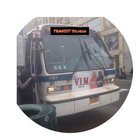 Transit Sylveon
