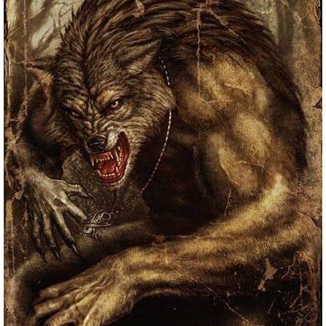 Оборотни - злые, кровожадные люди, способные превращаться в волков. Питаясь исключительно человеческим мясом и кровью, они выходят по ночам на поиски своих жертв, которыми часто становятся одинокие путники. Некоторые оборотни остаются полулюдьми-полуволками, другие полностью превращаются в волков. Считается, что оборотень способен выворачивать свою шкуру шерстью внутрь, превращаясь на некоторое время в человека.
