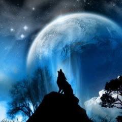 BOB CRIED WOLF