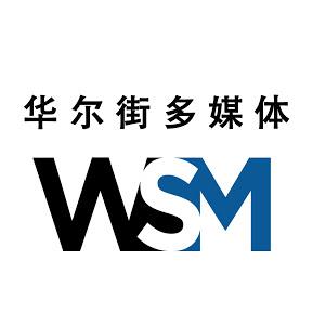 Wall Street Multimedia, Inc.