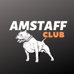 Amstaff club