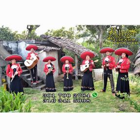 Mariachi Alma de México Pasto