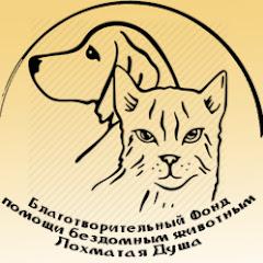 Лохматая Душа Валентины Силич