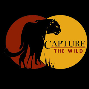 Capture The Wild