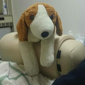 jumpy beagle