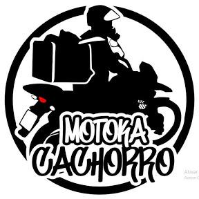 MOTOKA CACHORRO